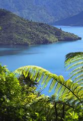 Fototapeta Landschaft in Neuseeland