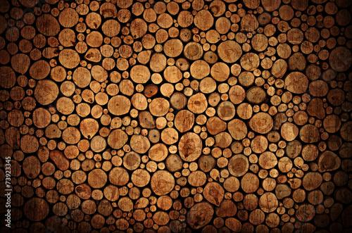 Fotografia  tree stumps background