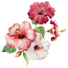 Naklejka hibiscus2