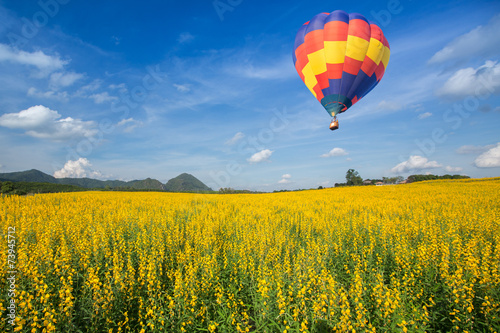 Fényképezés  Hot air balloon over yellow flower fields