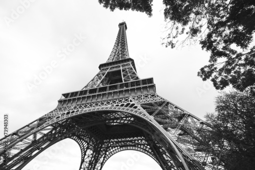 Fototapeta The eiffel tower in black and white, Paris obraz na płótnie