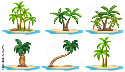 Islands and palm tree Wallpaper Mural