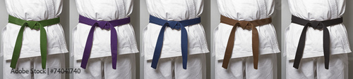Deurstickers Vechtsport Karate belts