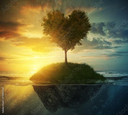 Fotografie, Tablou  Tree heart in ocean