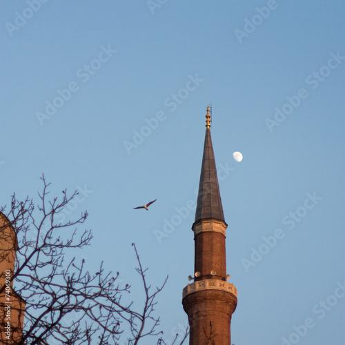 Fotografia  Hagia Sofia minaret