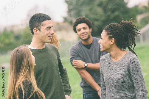 Obraz Multiethnic Group of Friends at Park - fototapety do salonu