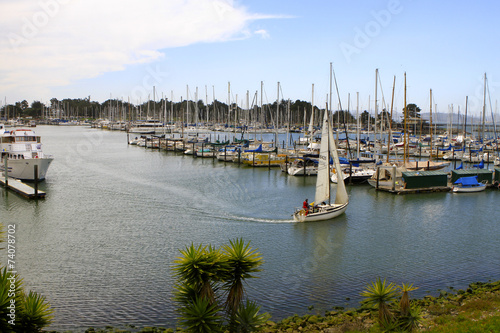 Marina de Berkeley, Californie Canvas Print
