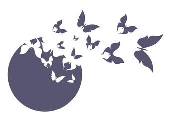 Fototapeta Motyle Бабочка
