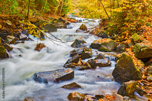 River in Algonquin Park in Ontario, Canada. Canvas Print