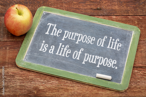 Poster  the purpose of life concept