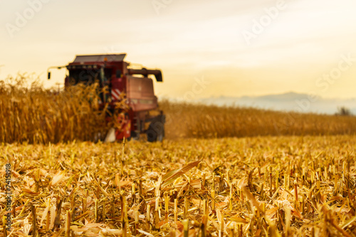 Photo Harvester working in background on corn field