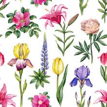 Watercolor Flowers Illustration. Seamless Pattern
