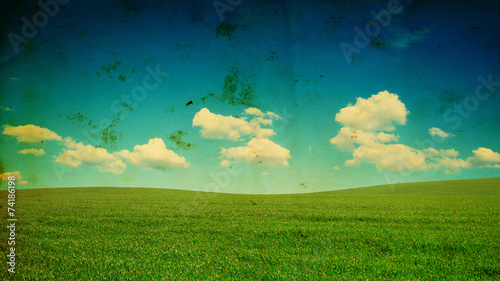 Canvas Prints Green coral field