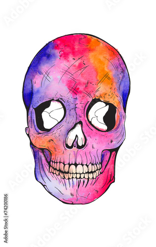 Poster Crâne aquarelle skull watercolor illustration