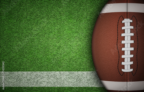 фотографія  American Football Ball on Grass