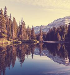 Fototapeta  jezioro górksie otoczone choinkami