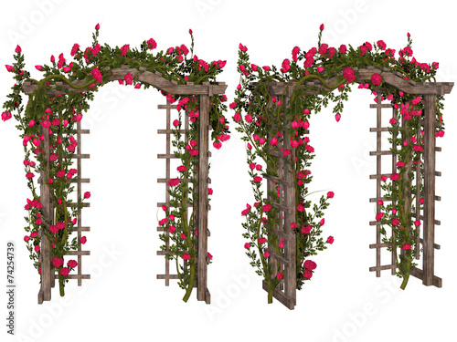 Tablou Canvas Romantic arbor with  pink  roses
