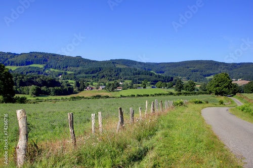 Fotografie, Obraz  plateau de mille vaches
