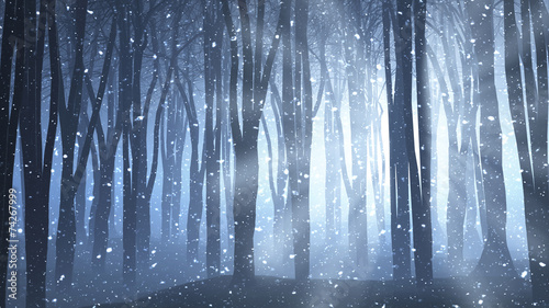 Photo Forest scene on a winters nights