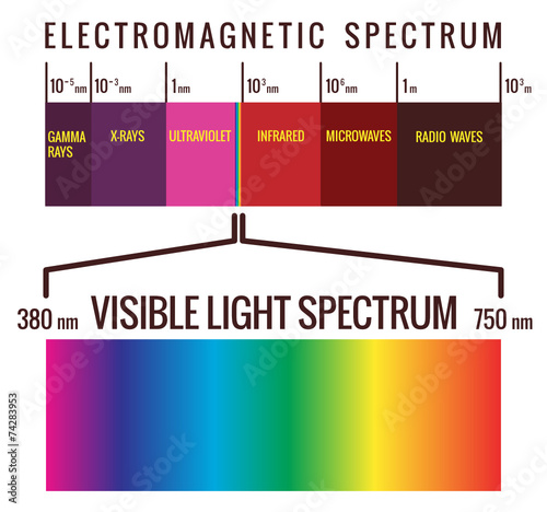 visible light spectrum buy this stock vector and explore similar