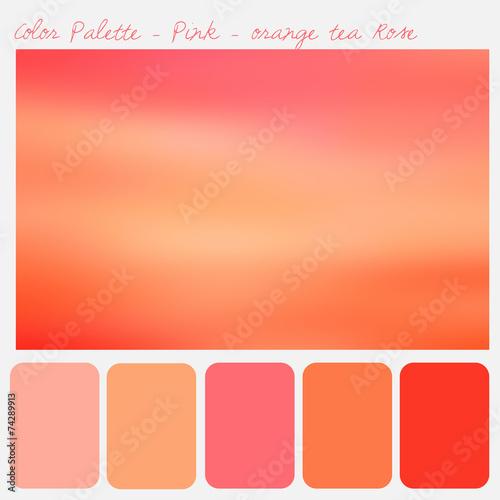 Color Palette Pink Orange Tea Rose Buy This Stock Illustration