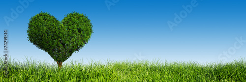 Heart shape tree on green grass field. Love symbol, banner