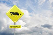 Puma Caution Road Sign