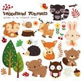 Fototapeta Fototapety na ścianę do pokoju dziecięcego - Animal woodland vector set