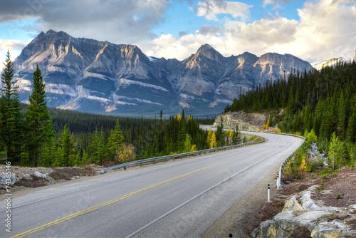 Obraz na plátně  Icefield road