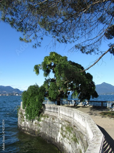 Photo  Stresa am Lago Maggiore