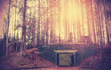 Scary Bunker Hidden In A Forest With Surreal Colors, Podborsko, Poland.