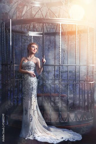 Fotografia, Obraz beautiful woman in elegant long dress standing near the cage