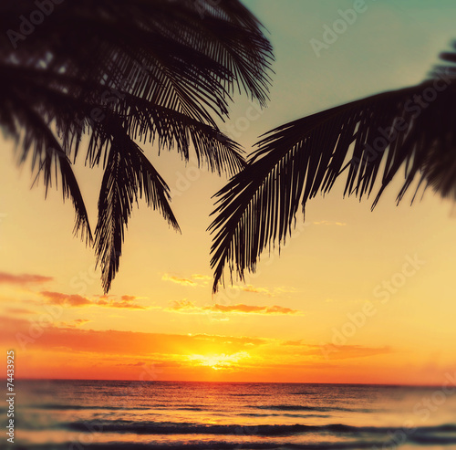 Foto op Aluminium Oranje Tropical beach