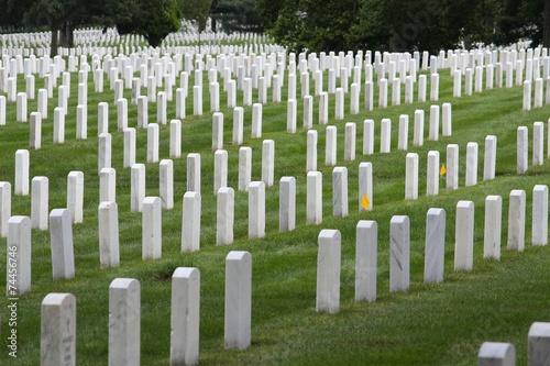 Foto op Canvas Begraafplaats Arlington National Cemetery, United States landmark