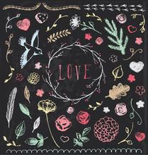 Hand Drawn Vintage Chalkboard Nature Elements