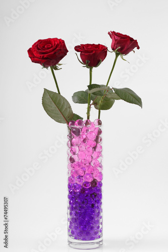 Beautiful flowers in vases with hydrogel Canvas Print