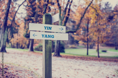 Opposite directions towards Yin and Yang Canvas Print