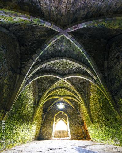 fototapeta na drzwi i meble Pokój wewnątrz starych ruin zamku