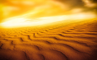 Fototapeta Sunset over the Sahara Desert