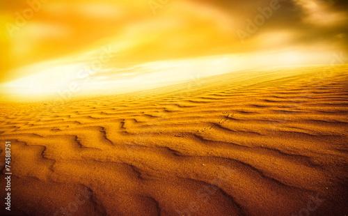Obrazy na płótnie Canvas Sunset over the Sahara Desert