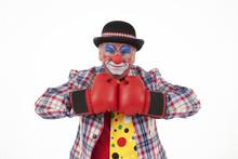 Clown Mit Boxhandschuhe