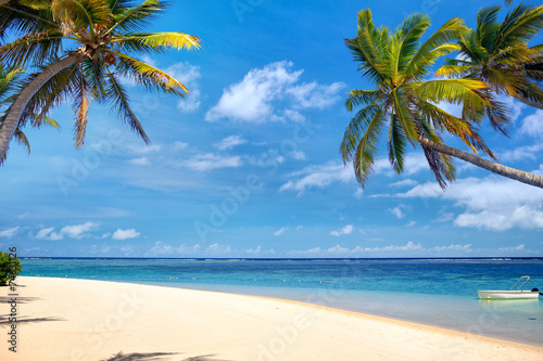 Fotografia  Perfect tropical beach with palms and sand, Mauritius