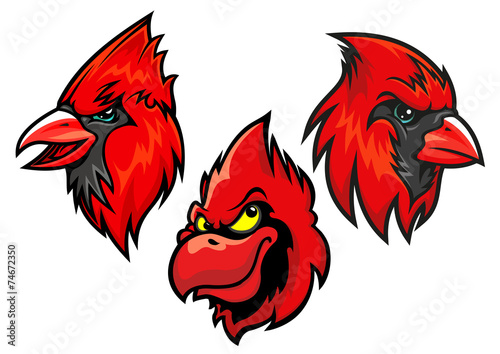 Photo  Cardinal bird heads set