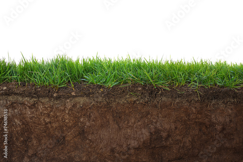 Tablou Canvas Grass and soil
