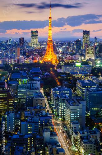 Stampa su Tela  Tokyo city at night, Japan