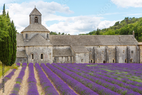 Fototapety, obrazy: Abbey of Senanque and blooming rows lavender flowers