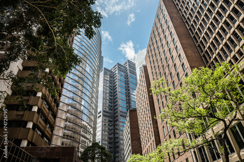 fototapeta na szkło Sydney Skyline