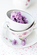 sprig of lilac in a cup