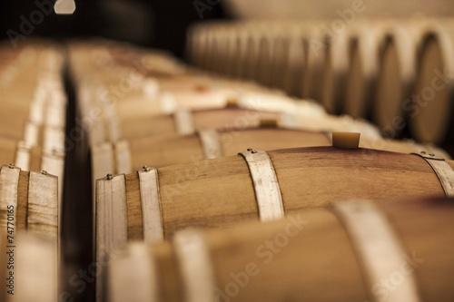 Fotografia  Cantina di Vino e barrique.