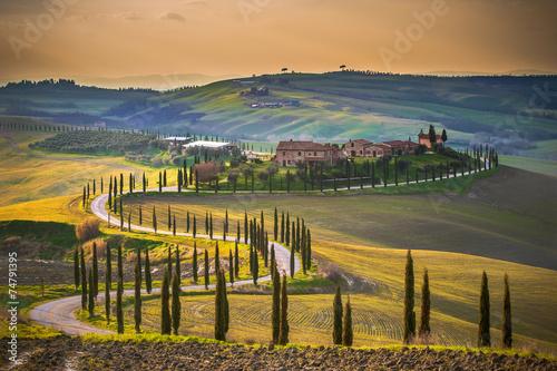 Deurstickers Toscane Sunny fields in Tuscany, Italy